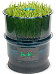 Freshlife Sprouter