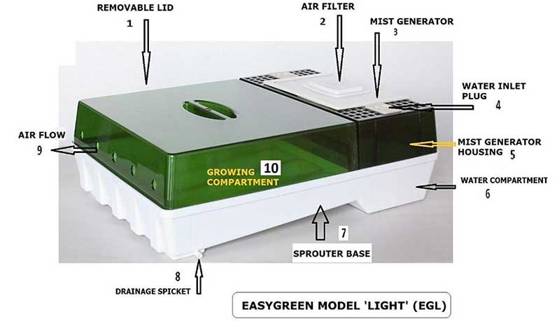 Easygreen Sprouter Lite